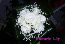Floraria Lily